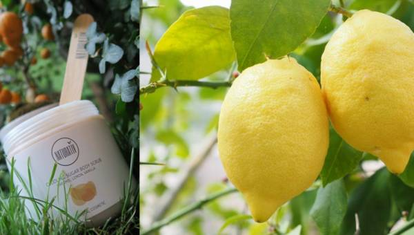 Kosmetyki NATURATIV – Otulający Scrub Cukrowy