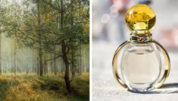 Zapachy drzewne i perfumy pachnące lasem
