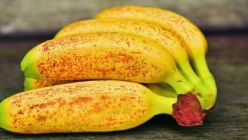 Dieta  bananowa – ciekawy wynalazek z Japonii