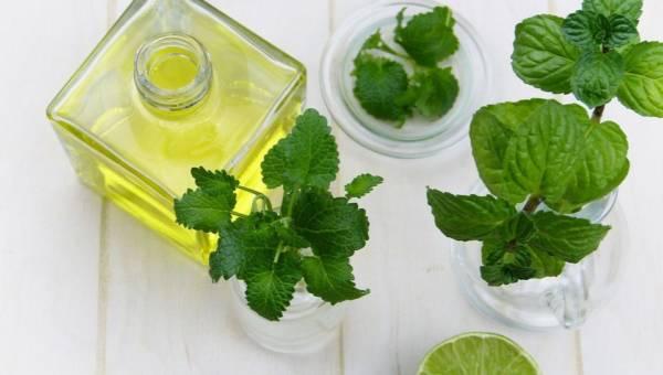 Domowy olejek na cellulit: przepisy