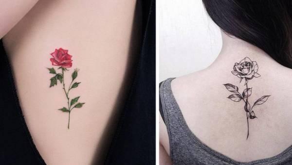 Tatuaż róża – poznaj jego historię i znaczenie, a później znajdź inspirację w naszej galerii!
