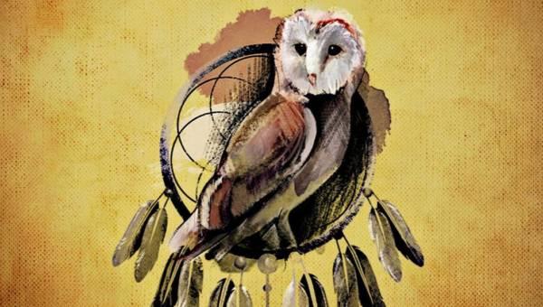 Horoskop indiański – zobacz, jakie zwierzę jest Twoim duchowym opiekunem
