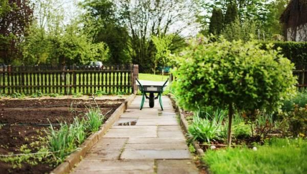 Wiosna w ogrodzie – czas na porządki