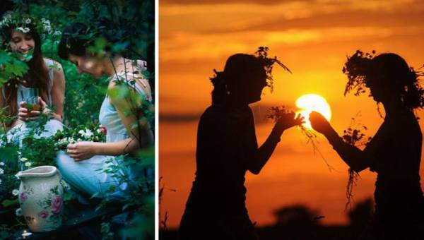 Magiczne zioła, które warto zebrać w Noc Kupały