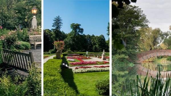 Najpiękniejsze ogrody w Polsce. Te zielone zakątki warto zobaczyć!