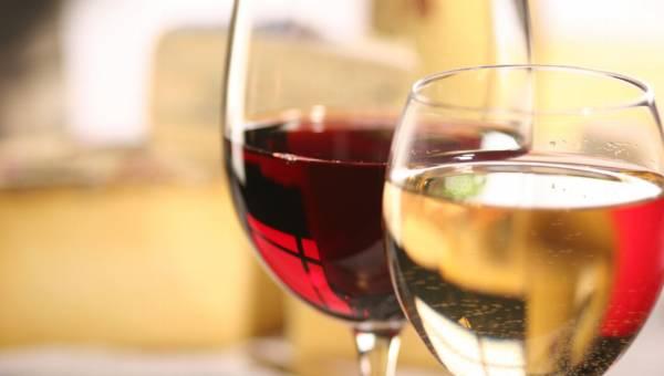 Szczepy win i ich rodzaje. Jak zorientować się w smakach i aromatach?