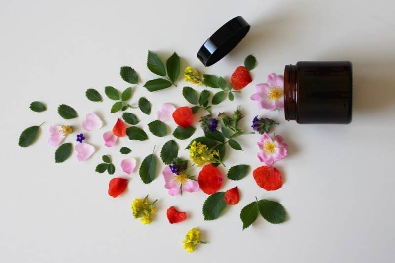 Domowy szampon na porost włosów: jak zrobić?