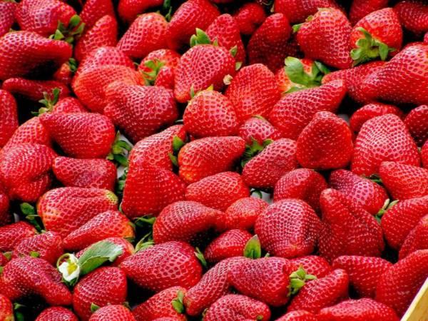 maseczki owocowe