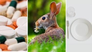 7 mitów o weganizmie. Czy są prawdziwe?