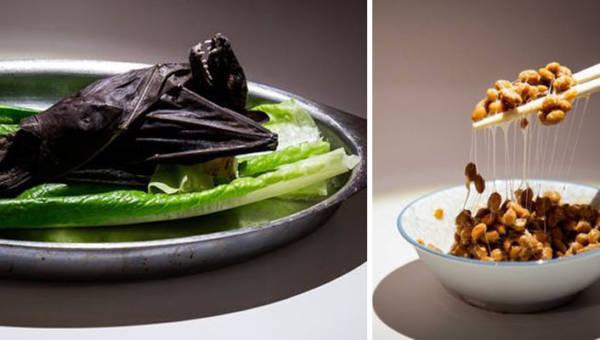Muzeum Wstrętnego Jedzenia. Najbardziej obrzydliwe menu z całego świata w jednym miejscu
