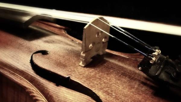 Rumuński artysta Adrian Borda fotografuje wnętrza instrumentów muzycznych. Te zdjęcia wprawią Cię w osłupienie!