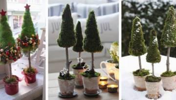 Choinka z mchu – unikatowa ozdoba, która pozwoli Ci przeżyć Święta blisko natury