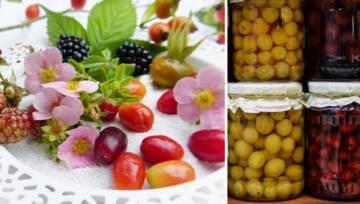 Dzikie owoce – sięgnij po nie zwłaszcza jesienią! Pomogą na przeziębienia, ale nie tylko…