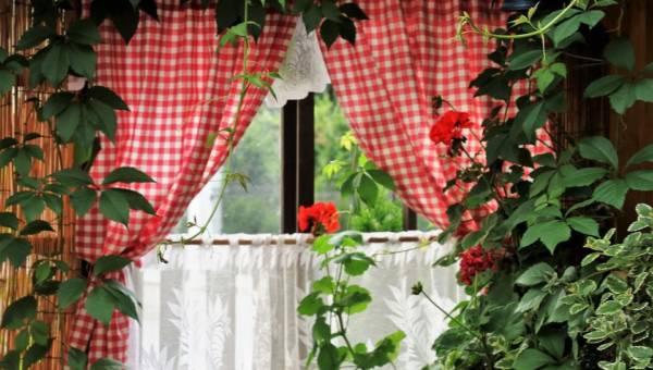 Najpiękniejsze kwietniki do wnętrz. Zielony i oryginalny charakter w twoim domu