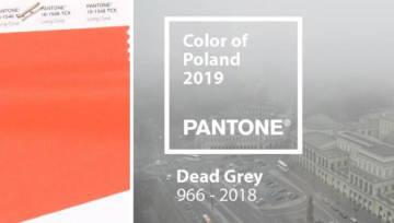 Kolor Pantone dla Polski powinien być zupełnie inny. Przedstawiamy smutny Dead Grey, przydymiony smogiem