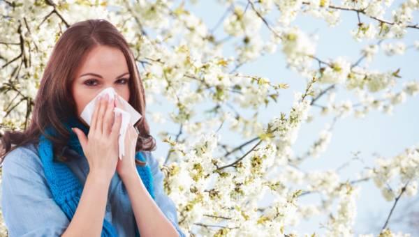 Alergia – o co chodzi?
