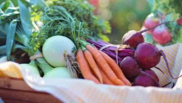 Jakie warzywa warto jeść zimą? Krótki poradnik