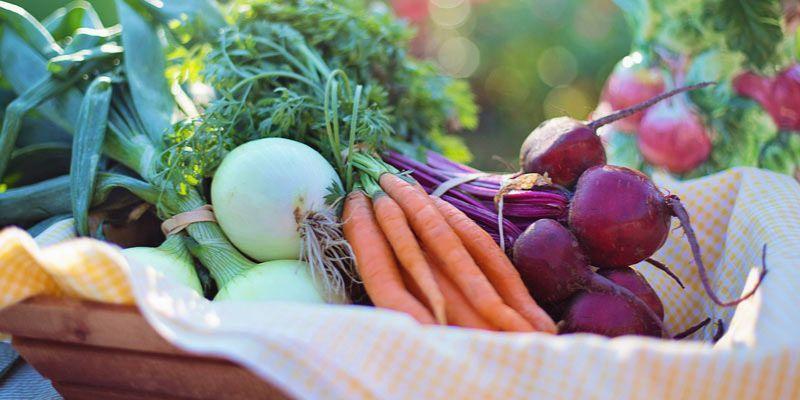 jakie warzywa warto jeść zimą