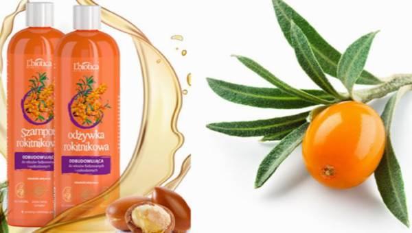 Olej z rokitnika w pielęgnacji włosów. Poznaj szampon i odżywkę od L'Biotica