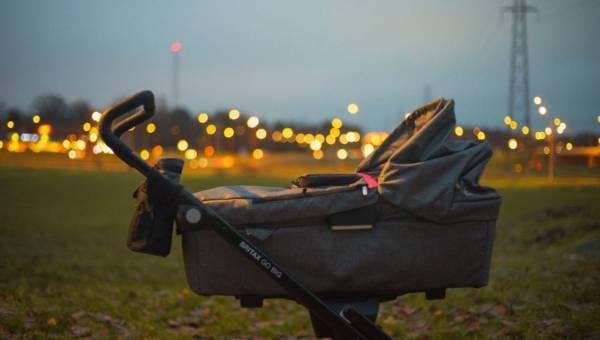 Znani producenci wózków dziecięcych: Baby Design