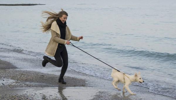 Canicross, czyli bieganie z psem – nowa forma aktywności fizycznej dla Ciebie i Twojego pupila!
