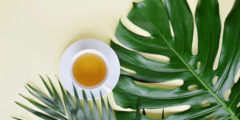 herbata cold brew