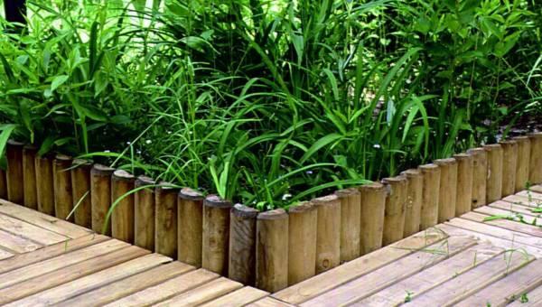 Strefa nasadzeń w ogrodzie – jak ją stworzyć z wykorzystaniem drewnianych rollboarderów?