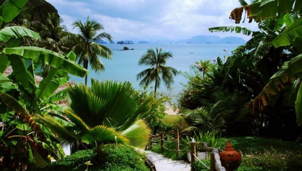 Styl tropikalny we wnętrzach. Czas na letnie zmiany i domową dżunglę