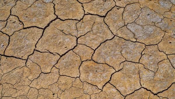 Wyczerpaliśmy już zasoby naturalne Ziemi na ten rok. Dług ekologiczny nalicza się od 29 lipca