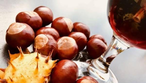 Nalewka z kasztanów – pyszny trunek i wspaniałe naturalne lekarstwo, w sam raz na jesień!