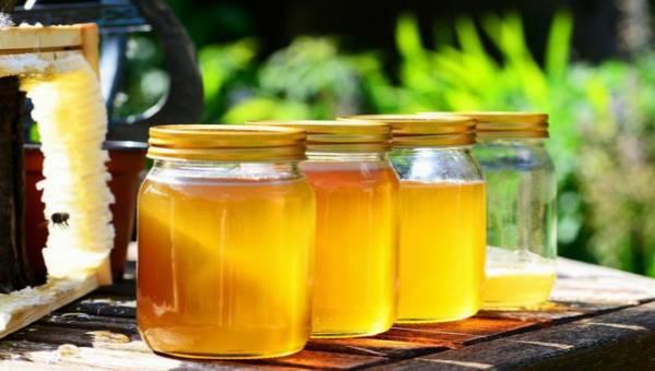 Rodzaje miodów a zdrowie – krótki przewodnik po uzdrawiających pszczelich eliksirach