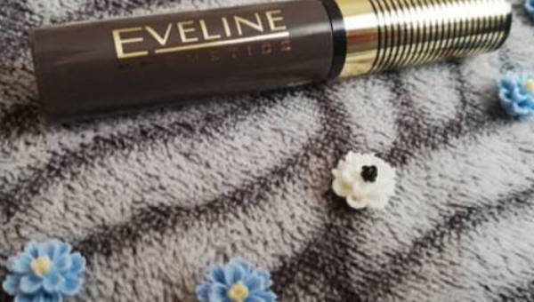 Eveline Cosmetics, Mascara do brwi Brow&Go!