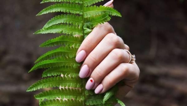 Hybrydy – wszystko, co musisz o nich wiedzieć