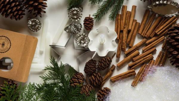 Co zrobić z szyszek – garść inspiracji, dzięki którym wyczarujesz prawdziwe cuda do dekoracji domu nie tylko na święta!