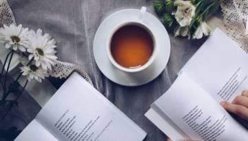 Gojnik czyli herbata górska – właściwości, zastosowanie i działanie