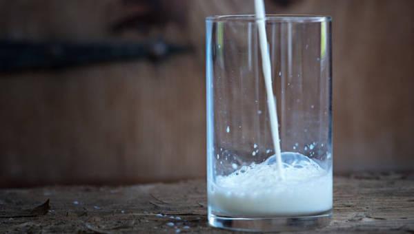 Mleko zwierzęce czy roślinne? Poznaj wszystkie za i przeciw