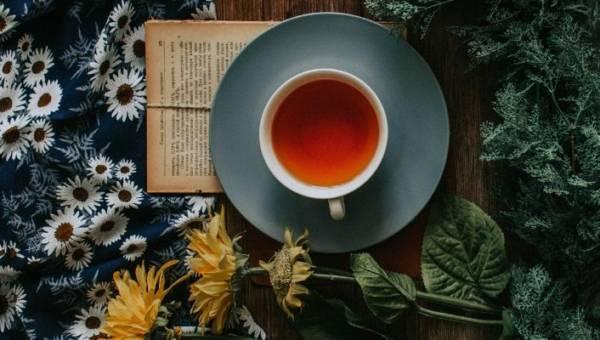 Herbata na każdy nastrój – co pić, kiedy dopada nas spadek energii bądź czujemy złość?