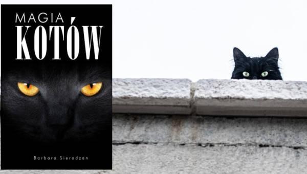 """Polecamy: """"Magia kotów"""" Barbary Sieradzan – pasjonująca, pięknie ilustrowana opowieść o najbardziej tajemniczych zwierzętach na Ziemi"""