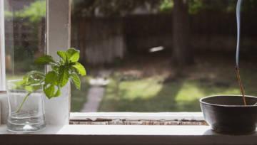 Co robić w domu podczas kwarantanny, by nie zmarnować czasu i nie dać się zwariować?
