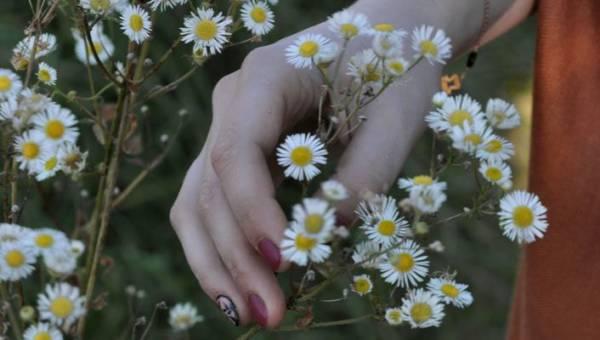 Paznokcie w stokrotki – piękny, słoneczny wzór idealny na pierwsze dni lata