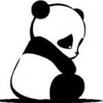 Zdjęcie profilowe Hoshi