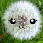 Zdjęcie profilowe ariana